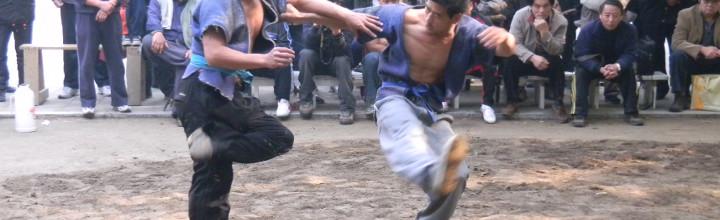 Sul wushu-gongfu