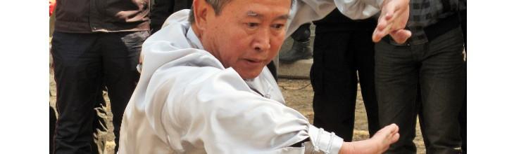 i 16 metodi del baguazhang (1)