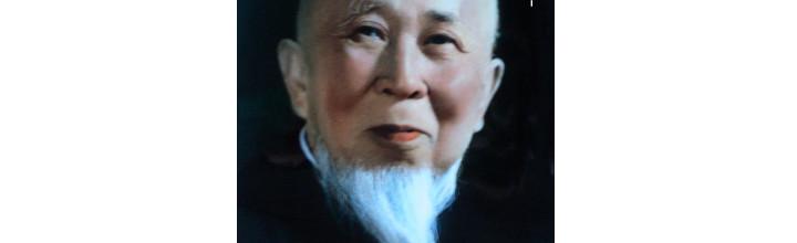 Il Maestro Li Ziming