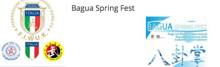Bagua Spring Fest