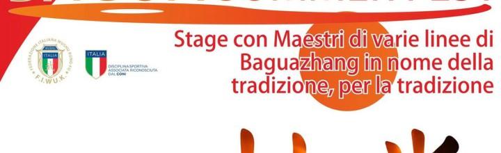 Bagua Summerfest